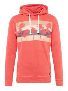 Tom Tailor sweater HOODIE MET PRINT 1009032XX12 11042