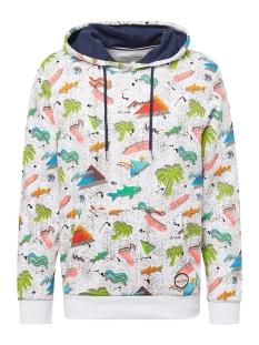 Tom Tailor sweater HOODIE MET PRINT 1011897XX12 18293