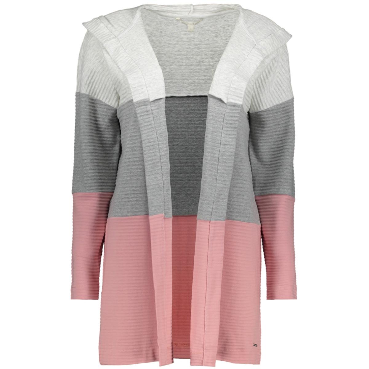 vest met capuchon 1017816xx71 tom tailor vest 18918