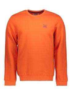 Tom Tailor sweater SWEATSHIRT MET PRINT 1015684XX12 15612