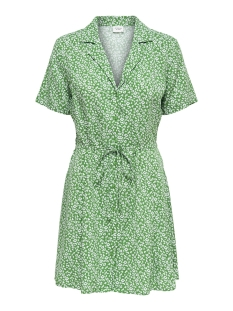 Jacqueline de Yong Jurk JDYSTAR S S SHIRT DRESS WVN FS 15171488 Medium Green/CLOUD DANCER