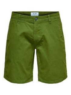 Only & Sons Korte broek ONSHOLM CHINO SHORTS  PK 2174 NOOS 22012174 Cactus