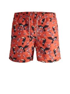 jjiaruba jjswimshorts akm animal sts 12169645 jack & jones korte broek hot coral