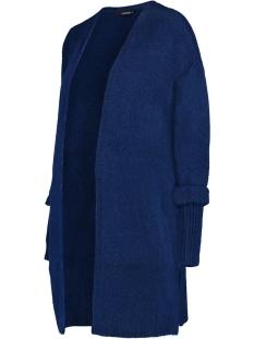 SuperMom Positie vest S0819 C130 Blue