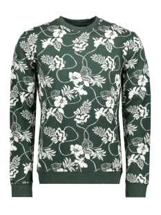 Only & Sons Sweater onsMATTI FLOWER CREW NECK SWEAT EXP 22010610 Pine Grove