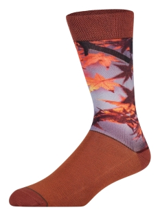 Sock my feet Accessoire AUTUMN LEAVES HW18M002 MULTICOLOR
