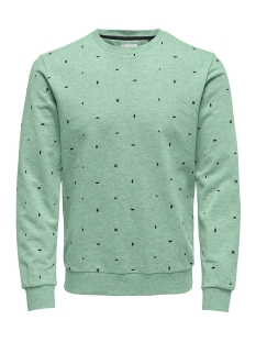 Only & Sons sweater onsNATHANIEL AOE CREW SWEAT 22012629 Grayed Jade