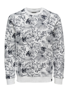 Only & Sons Trui onsKAMILL AOP CREW SWEAT 22012545 White Melange