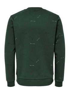 onstalus crew neck aop 22014592 only & sons trui trekking green