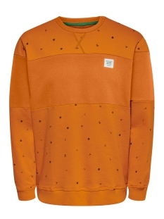 Only & Sons sweater ONSDEXTER REG CREW NECK SWEAT 22015400 Marmalade