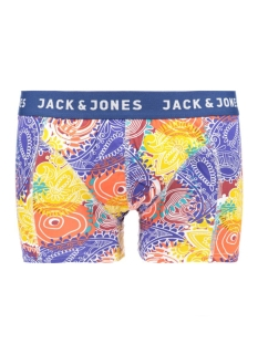 JACPAISLEY TRUNKS NOOS 12117420 Estate Blue